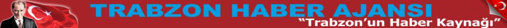logo_ana